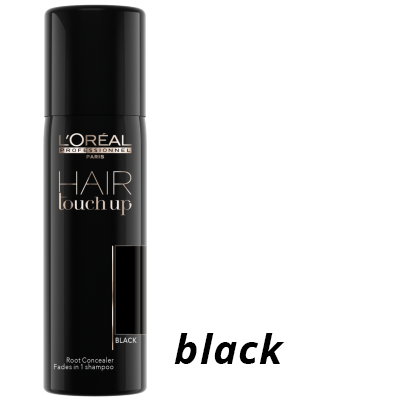 Black L'Oreal Professionel Hair Touch Up Spray for sale at Brian Chapman Hair Salon, Doylestown, PA