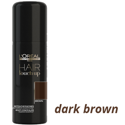 Dark Brown L'Oreal Professionel Hair Touch Up Spray available at Brian Chapman Hair Salon