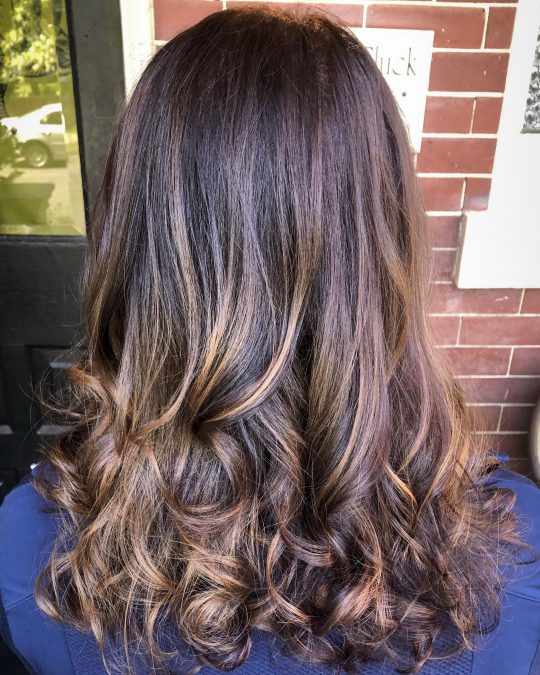 Brunette Honey Blonde Balayage
